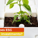 How does ESG impact investments?