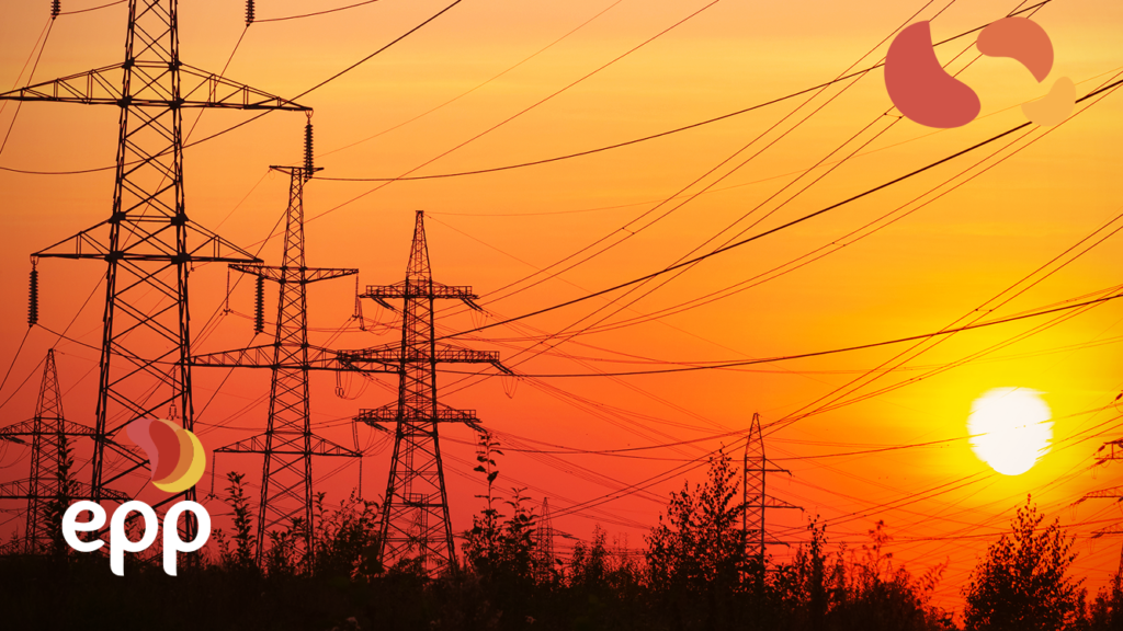 What are the regulatory agents of the Free Energy Market?