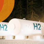 The importance of flexibility in Brazilian hydrogen policy